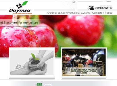 daymsa-web